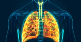 Scientists develop diagnostic therapy to detect lung cancer at early stage