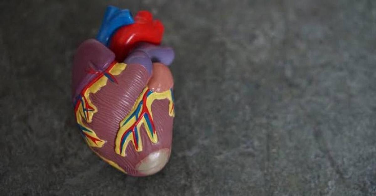 8 risk factors that can lead to heart failure. (Source: Unsplash)