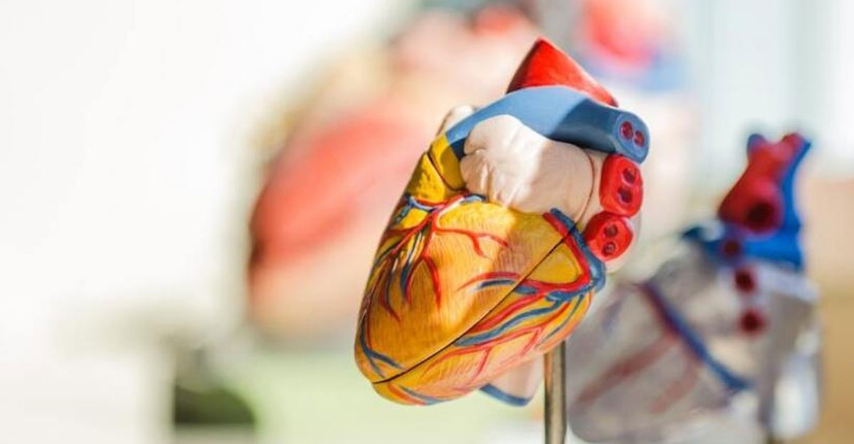 Treating the heart with scientific breakthroughs, lifestyle changes.