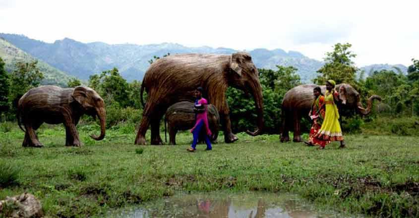 Lantana-Elephants5