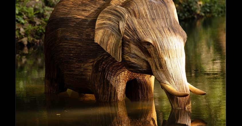 lantana-elephant-1
