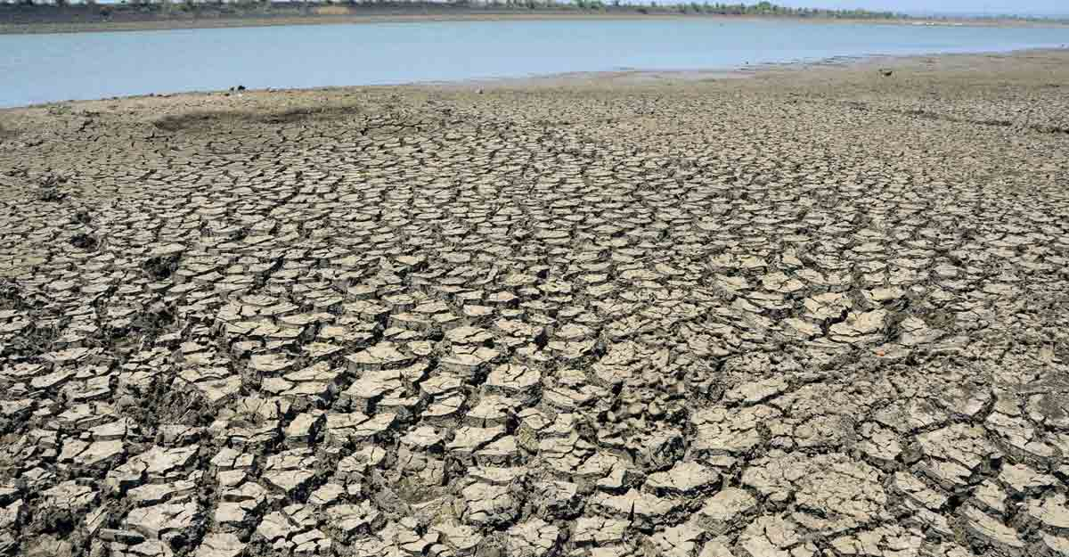 Nagpur: Parched land at the drought affected Vena Dam off Amravati Road, 25km from Nagpur, on May 14, 2019. Around 21,000 villages in 151 tehsils across Maharashtra are in the grip of drought, covering almost half the geographical area of the state. (Photo: IANS)