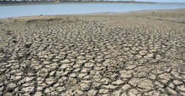 30 cities in India may face water risk within decades, says WWF