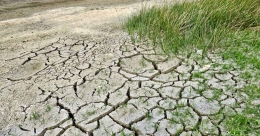 Climate change can adversely affect world's arid regions in poor countries