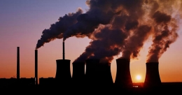 CO2 emissions could fall by up to 7% this year: Study