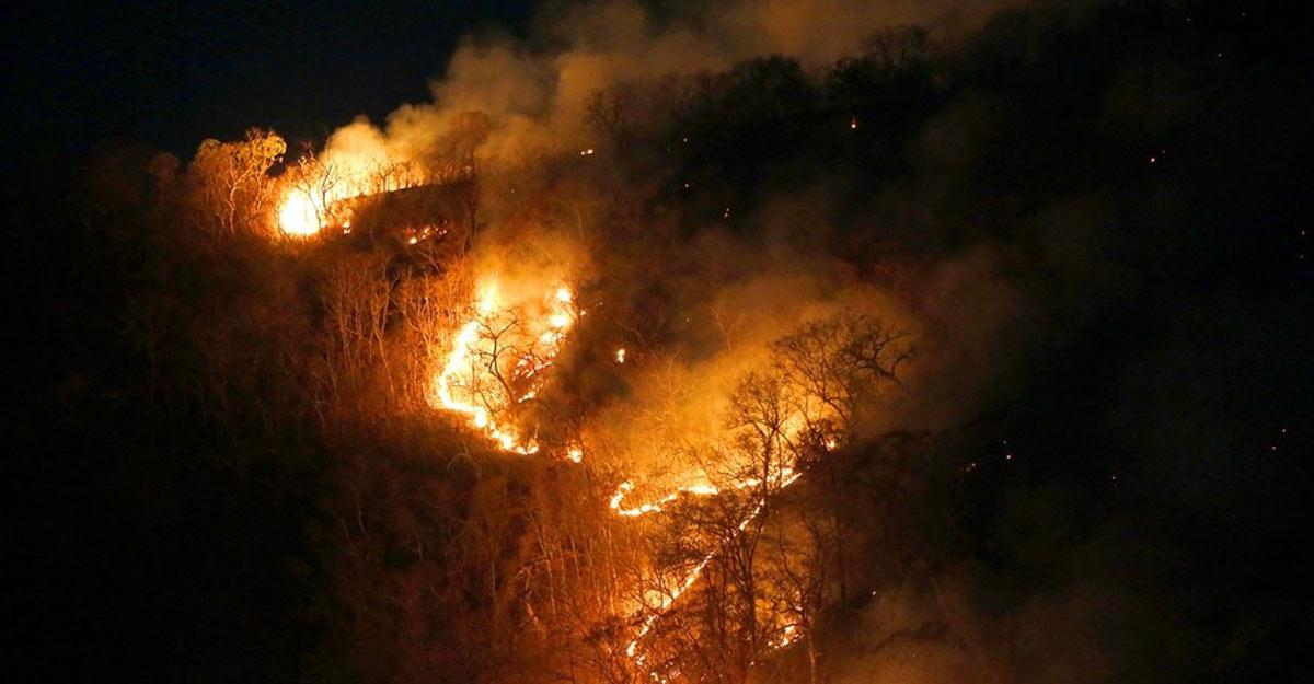 Rio de Janeiro, Aug. 27 (Xinhua) -- Image taken on Aug. 17, 2019 shows a raging fire in the Amazon rainforest in the state of Tocantins, Brazil. (Dida Sampaio/AGENCIA ESTADO/Handout via Xinhua/IANS)