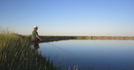 Recreational fishing: a new economic opportunity for India