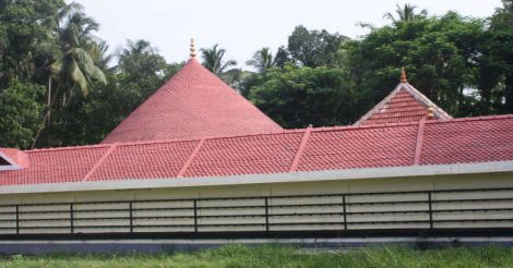 Don't you want to return to Palakkad?