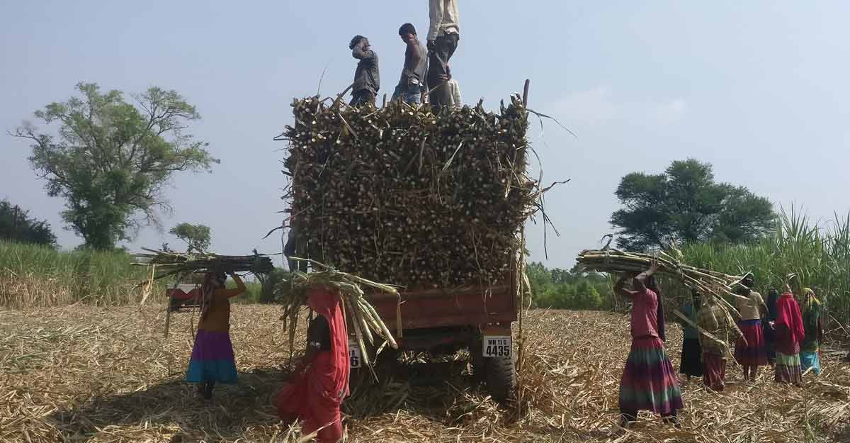 Union Budget: War on rural India's lifeline continues