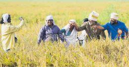 Kudos Kerala govt, for harvesting hopes from Metran kayal