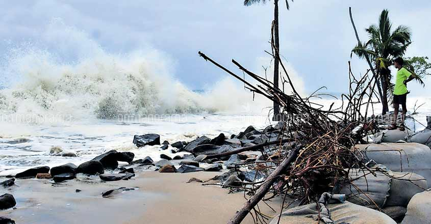 Heavy rains lash Kerala; trees uprooted, houses destroyed
