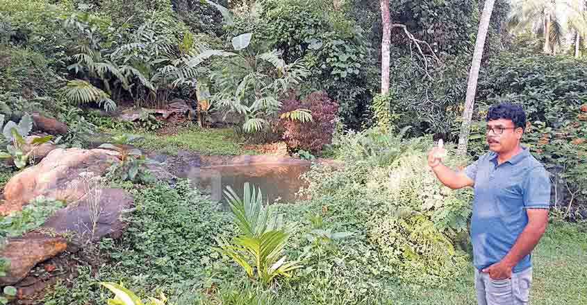 This Malappuram man grew a forest on his own