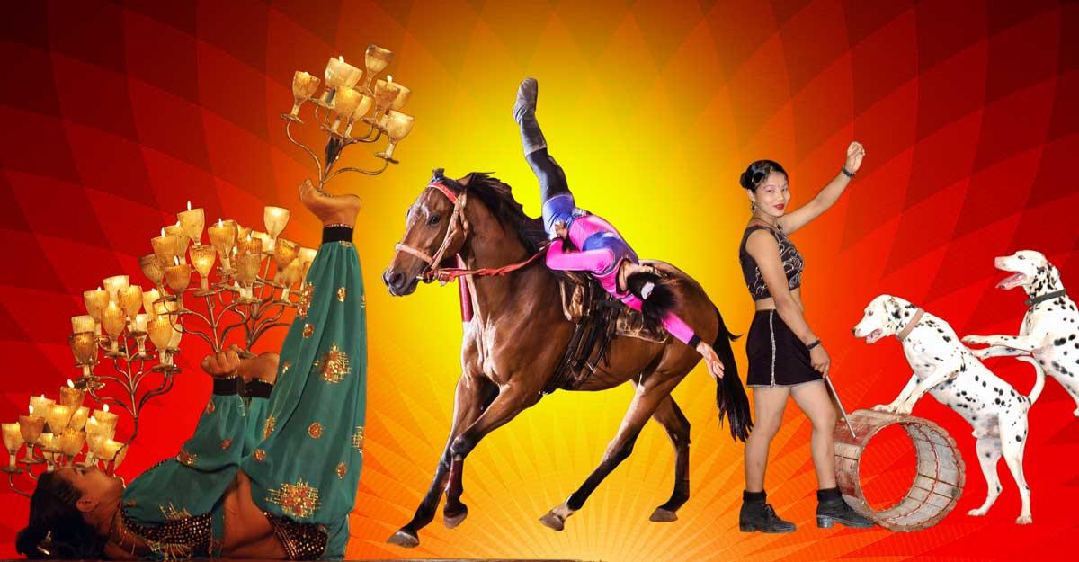 Circus artistes on a tightrope walk: Blame it on lockdown, demonetisation & animal ban