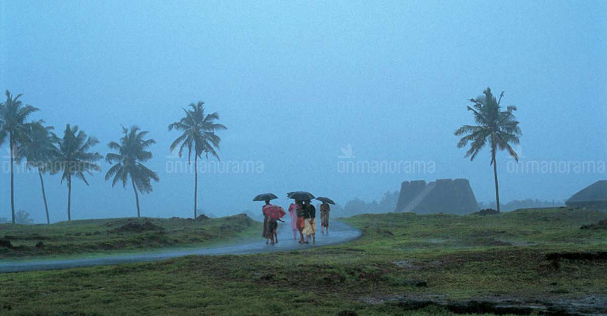 Heavy rains likely in Kerala till Wednesday; orange alert in Kasaragod