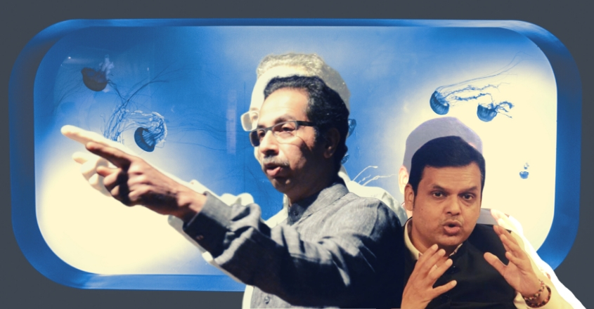Uddhav may press pause on bullet trains, hyperloop to raise a big fish tank!