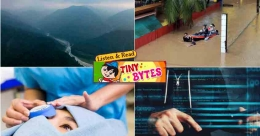 Tiny Bytes: Organic Sikkim, mobile apps dangers, and more