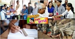 Tiny Bytes: Kunjuduppu project, mother-daughter duo clears SSLC exams