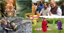 Tiny Bytes: J&K, Ladakh become Union Territories, dinosaur bone found in France, and more