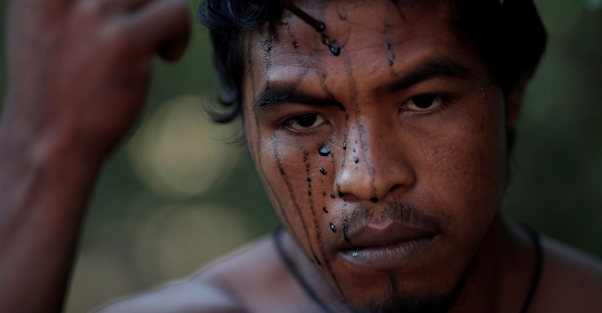 Illegal loggers kill Amazon indigenous warrior who guarded forest