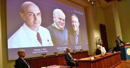 Scientists who helped identify Hepatitis C virus win 2020 Nobel Medicine Prize