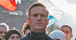 Soviet-era nerve agent used on Russia's Alexei Navalny