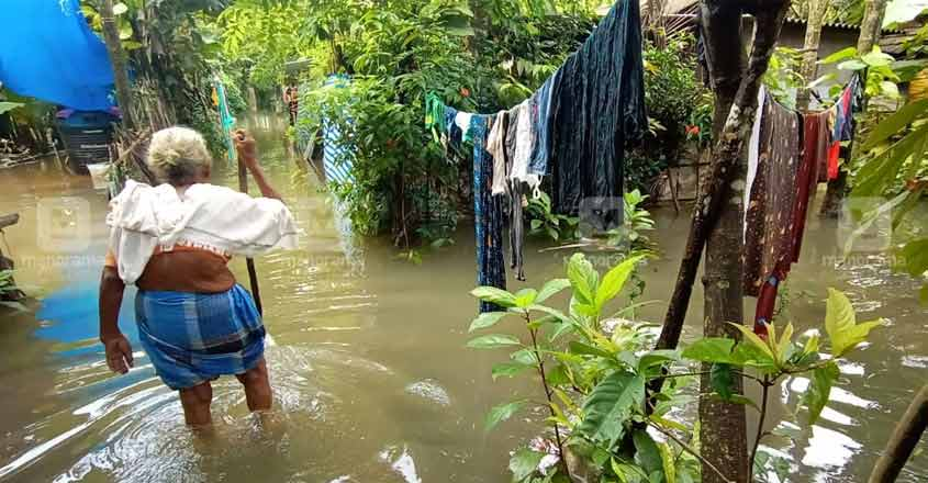 Heavy rain pounds Kerala, several rivers in spate