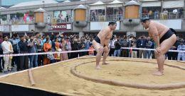 Japanese sumo wrestler dies of coronavirus