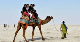 Animal use may risk COVID-like disease in tourist spots