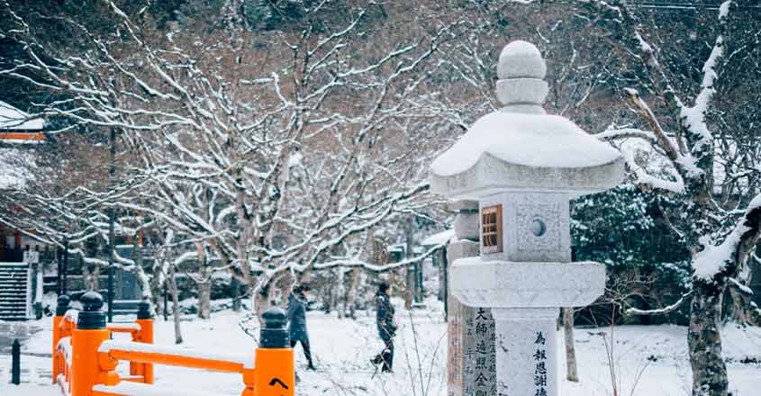 Your guide to Japan in December