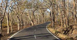 Bandipur, an ideal getaway from city life