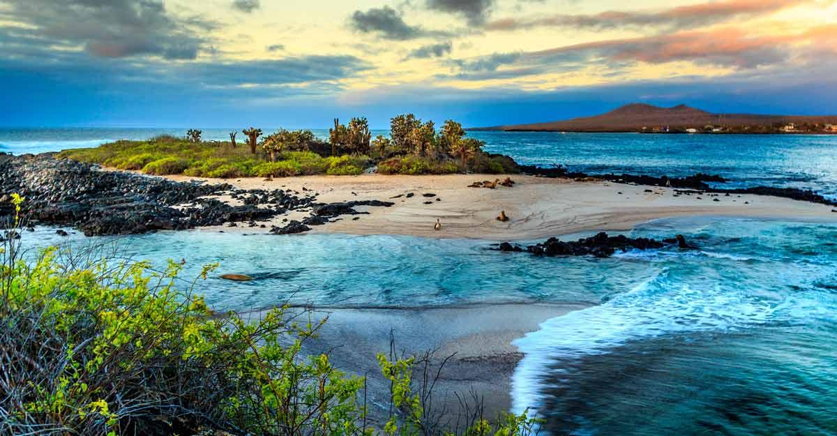galapagos-island