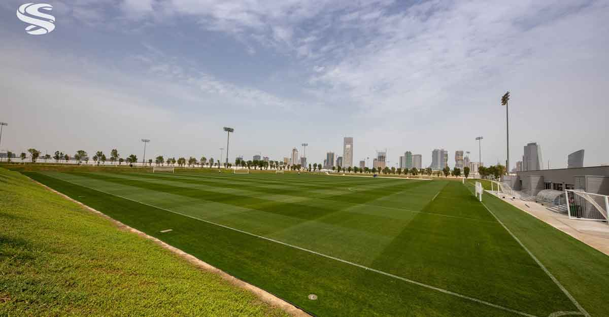 doha-pitch