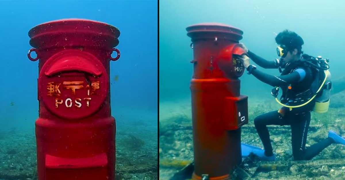 Dive down, you got mail: World's deepest underwater post box