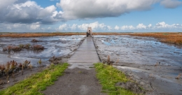Dutch islands Marker Wadden created for the cause of nature