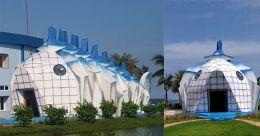Odisha museum to showcase marine diversity