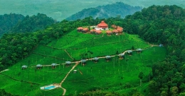 Experience nature's bounty at this luxurious resort in the Nilgiris