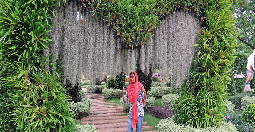jinsha-travel-vlogger5