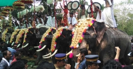 Tuskers, music and sea of crowd mark Thrissur Pooram