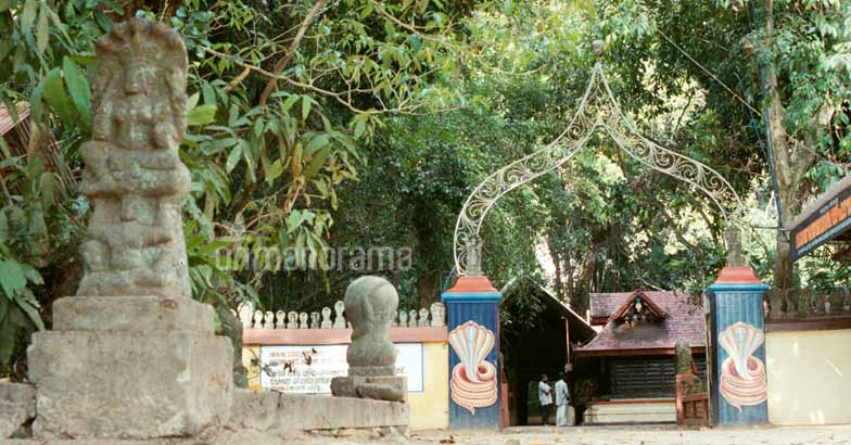 Of snake worship and the famous shrines