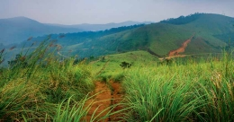 Vagamon – the jewel in the crown of Idukki