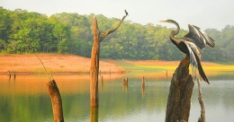 Five off beat spots to be explored near Thekkady in Idukki