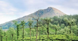 Float among the clouds in Idukki's Pasuppara