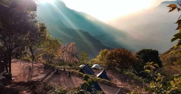 Go tent camping atop misty hills of Munnar with 'Amoeba Nature'