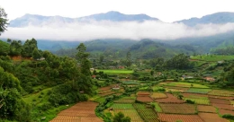Why Vattavada is hailed as agricultural haven of Kerala