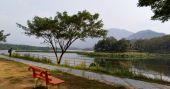 Malankara dam is perfect for a short trip near Vagamon