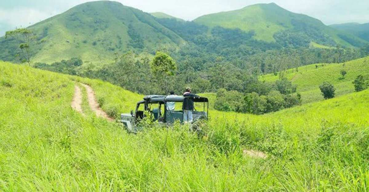 Mount Sathram is another gem of a place in Idukki