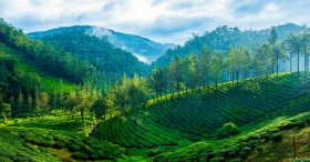 A complete guide to picturesque Thekkady