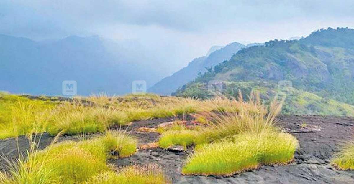 Meenuliyanpara, a misty hill steeped in myth