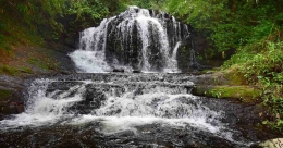 Thooval falls, a beauty in Nedumkandam