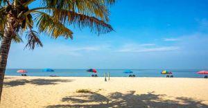 Alappuzha, Marari: Two among the most scenic beaches in Kerala